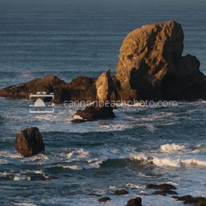 Arch Rock in Morning Light