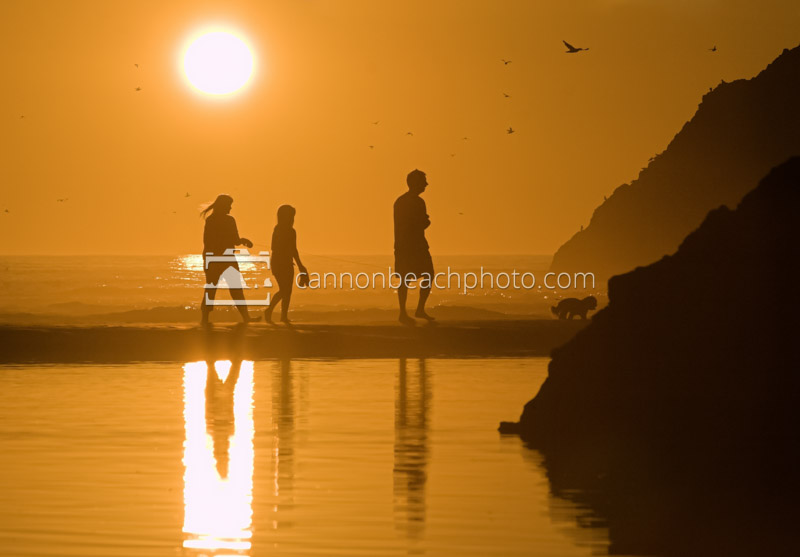Family Silhouetted at Sunset 1