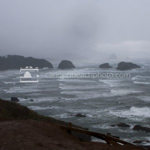 Foggy Ecola State Park View