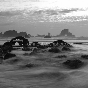 Black and White Tide