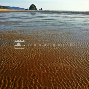 Sand Ripples, Summer Day
