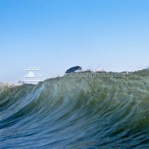 Oregon Wave Crest