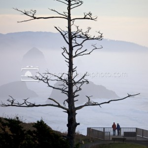 Simply the best view on the Oregon Coast, even on a foggy day