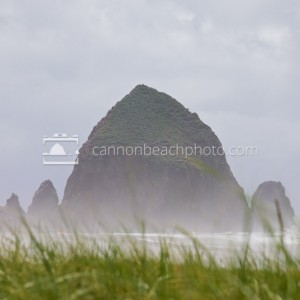 Stormy Haystack Rock Above the Dunes