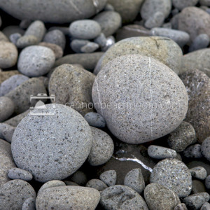 Rain Specks on Beach Stones