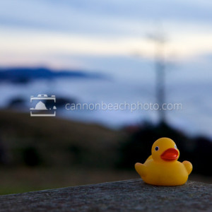 Rubber Ducky at Ecola Point
