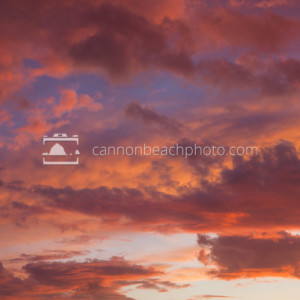 Vibrant Pink Clouds