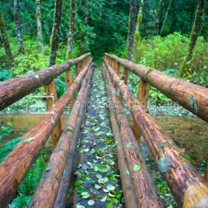 Wood River Bridge
