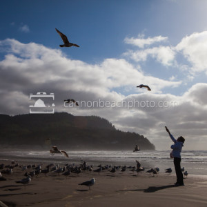 Feeding Seagulls on the Oregon Coast