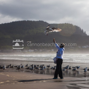 Feeding the Seagulls in Seaside, Oregon