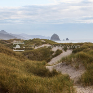 Overcast View of Dunes and Haystack Rock