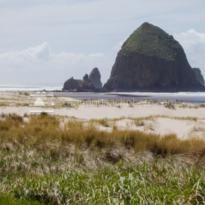 Haystack Rock and Dune Grass, Late Summer