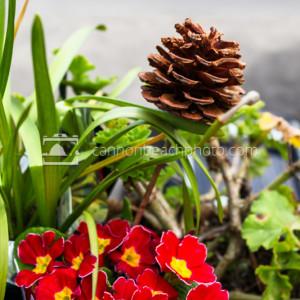 Natural Flower Bouquet