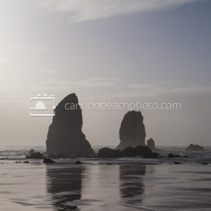 The Needles – Oregon Coast Seastacks