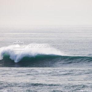 Winter Wave Crest