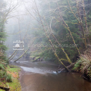Misty Day at Ecola Creek