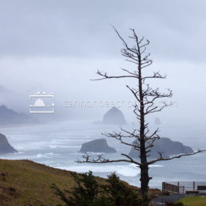 Foggy Cannon Beach from Ecola State Park