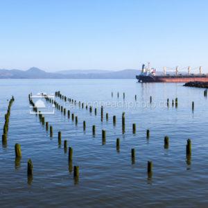 Astoria River Pilings and Cargo Ship