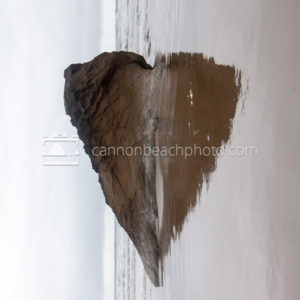 Beach Heart Reflection