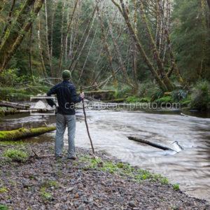 Creek Hiker, Oregon Forest