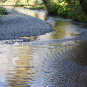Ecola Creek Reflections
