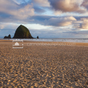 Sunlit Sandy Shore and Haystack Rock, Horizontal