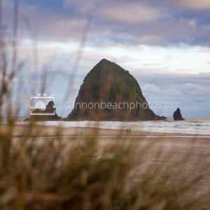 Through the Dunes, Haystack Rock