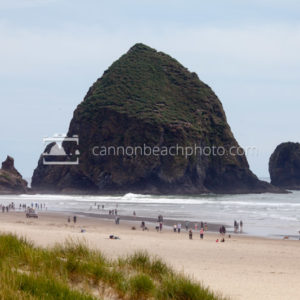 Green on Haystack Rock, Busy Shore