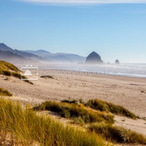 Sunny View South of Cannon Beach