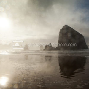 Wet Lens View of Haystack Rock