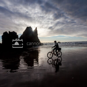 Beach Bike, Arcadia