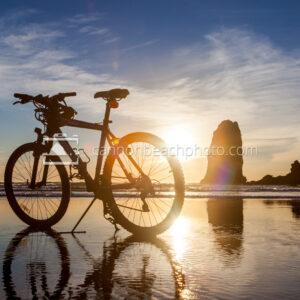 Beach Bike and Needles Silhouette