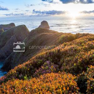 Sunlight on Chapman Point