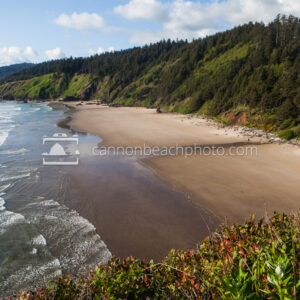 Sunny View of Crescent Beach from Chapman Point