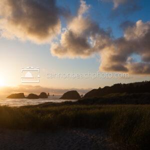Dune Overlook in Afternoon Light