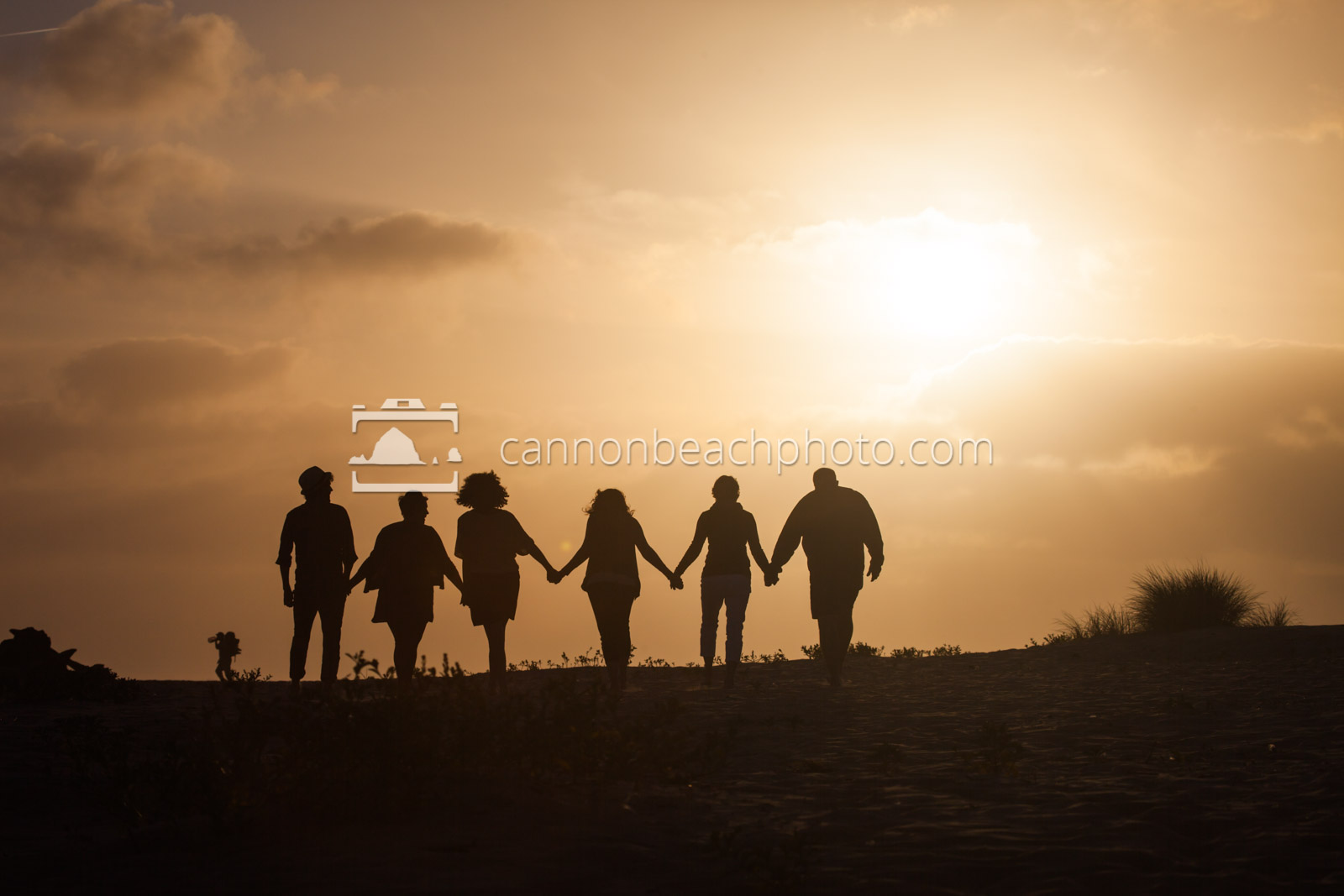 Silhouetted Family Hand in Hand on the Beach