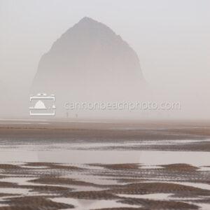 Dreamy Haystack Rock thru the Fog, Vertical