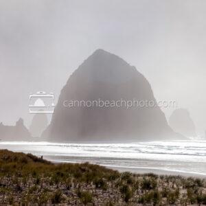 Fog Light, Haystack Rock