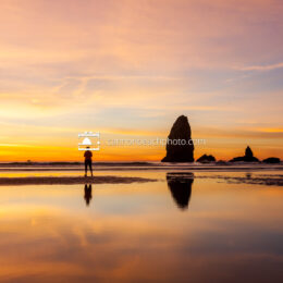 Haystack Rock Brilliant Sunset Yellow Needle Reflection