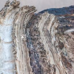 Jagged Rock Texture Vertical