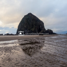 Just Haystack in Rippled Sand